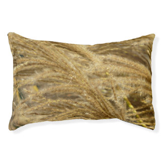 Ornamental Grasses in Fall Pet Bed