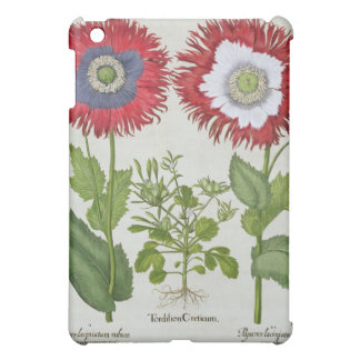 Ornamental Poppies, from the 'Hortus Eystettensis' iPad Mini Cases