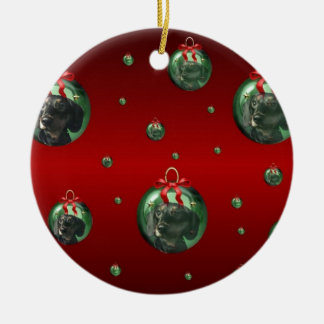 Ornaments with puppy reflection