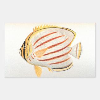 Ornate Butterflyfish Rectangular Sticker