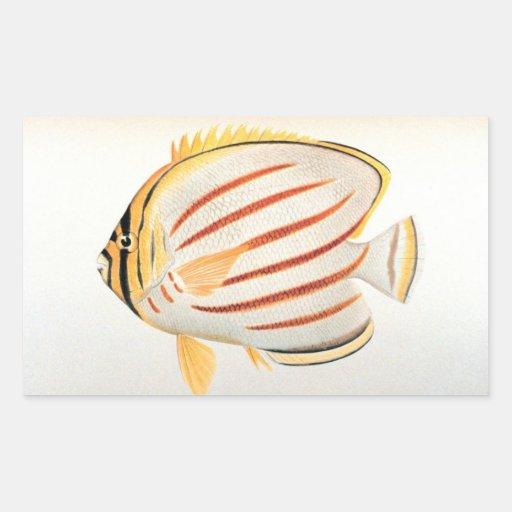 Ornate Butterflyfish Rectangle Sticker