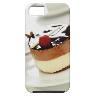 Ornate cheesecake on plate with coffee cup in iPhone 5 case