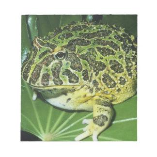 Ornate Horned Frog, (Ceratophrys ornata), Notepad