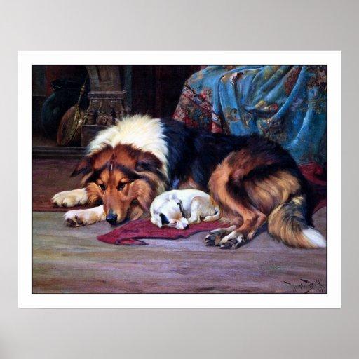 Orphan Dog with Collie - Vintage Fine Art
