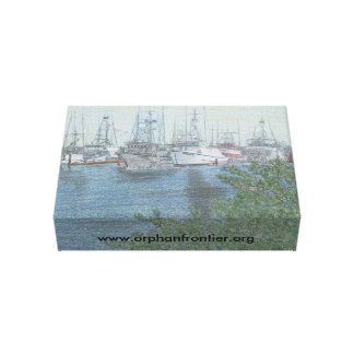 Orphan Frontier Stretched Canvas Print