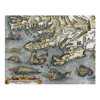 Ortelius Map Sea Monsters Postcards