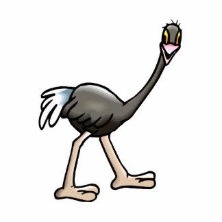 Orville Ostrich Standing Photo Sculpture