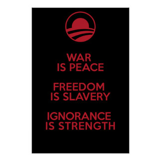 Orwellian / Obamian definitions Poster