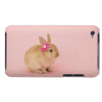 Oryctolagus cuniculus 2 barely there iPod cases