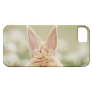 Oryctolagus cuniculus 2 iPhone 5 case