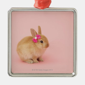 Oryctolagus cuniculus 2 square metal christmas ornament