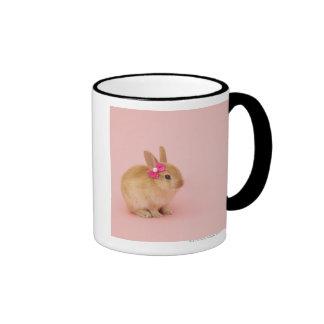 Oryctolagus cuniculus 2 coffee mugs
