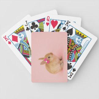 Oryctolagus cuniculus 2 card decks