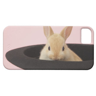 Oryctolagus cuniculus iPhone 5 cover