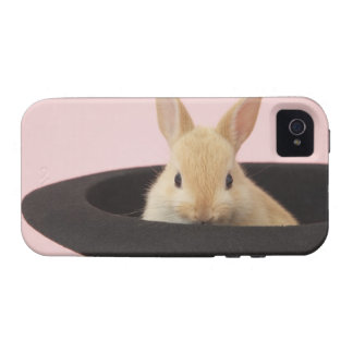 Oryctolagus cuniculus iPhone 4/4S cases