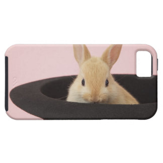 Oryctolagus cuniculus iPhone 5 covers
