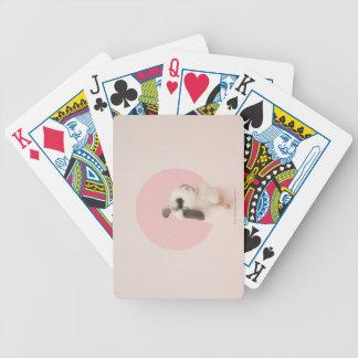 Oryctolagus cuniculus poker cards