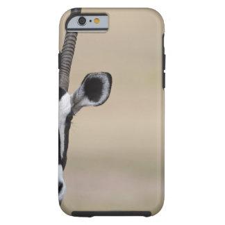 Oryx also called Gemsbock, Oryx gazella, Auob Tough iPhone 6 Case