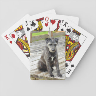 Oscar Sees a Toad Playing Card