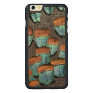 Oscillated Turkey feather pattern Carved Maple iPhone 6 Plus Case
