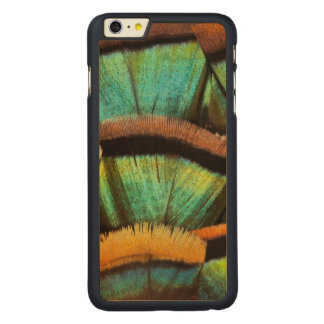 Oscillated Turkey feathers Carved® Maple iPhone 6 Plus Case