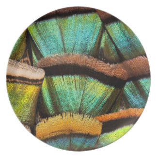 Oscillated Turkey feathers Plate