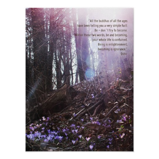 Osho Wisdom Quote Enlightenment Poster