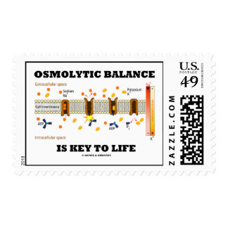 Osmolytic Balance Is Key To Life Active Transport Postage Stamps