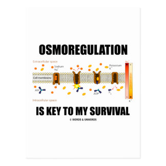 Osmoregulation Is Key To My Survival Post Card