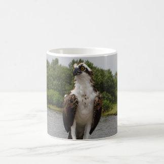 Osprey Bird Coffee Mug