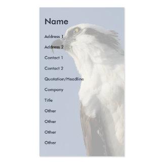 osprey business cards