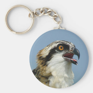 Osprey chick 2 key ring