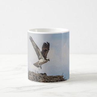 Osprey in a nest coffee mug