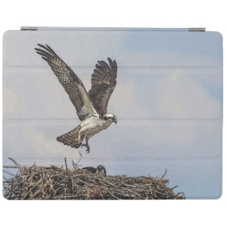 Osprey in a nest iPad cover