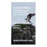 Osprey Landing Business Cards