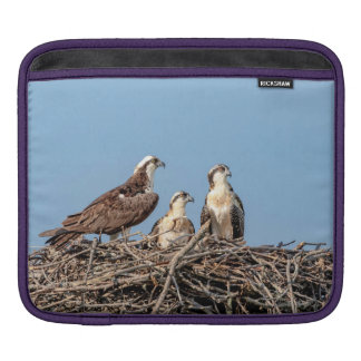 Osprey mom with her kids sleeve for iPads