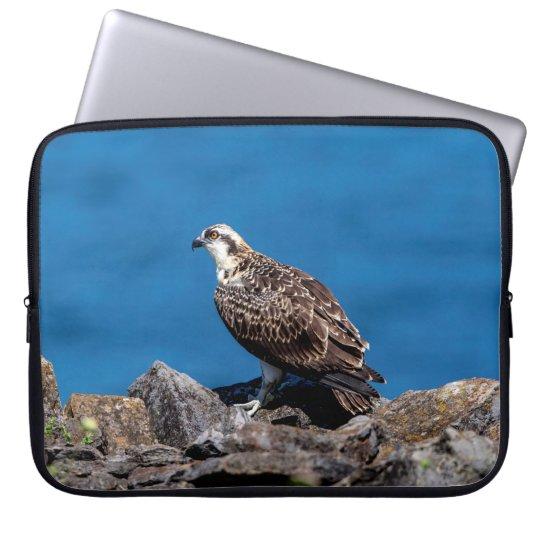 Osprey on the rocks laptop sleeve