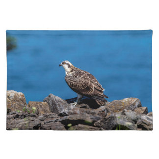 Osprey on the rocks placemat