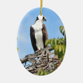 Osprey Ornament