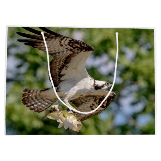 Osprey with a large mouth bass large gift bag