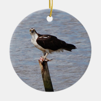 Osprey with Fish ornament