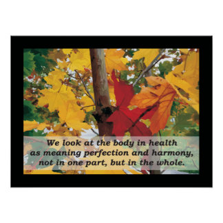 Osteopathic Harmony Quote by A.T. Still Poster