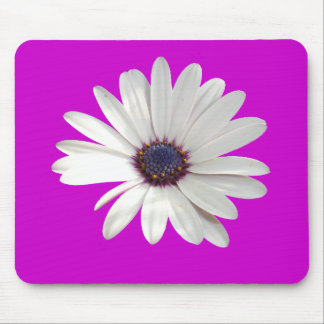 Osteospermum Daisy with Purple Centre Mouse Pad