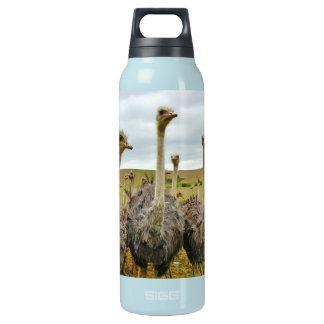 Ostrich Bird Insulated Water Bottle