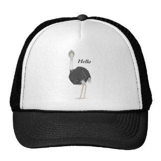 Ostrich Cap
