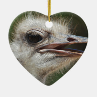 Ostrich Ceramic Heart Decoration