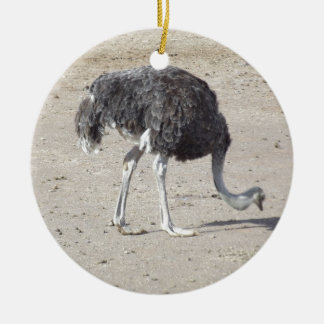 Ostrich Christmas Ornament