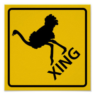 Ostrich Crossing Highway Sign Poster