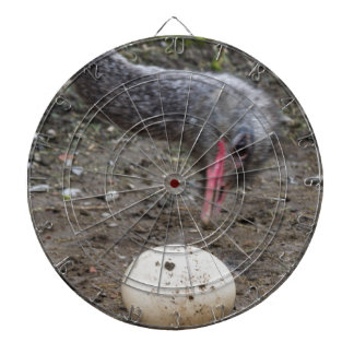 ostrich egg dartboards