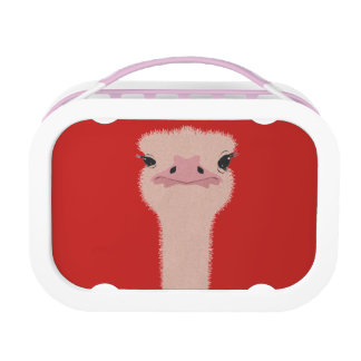 Ostrich funny face lunch box